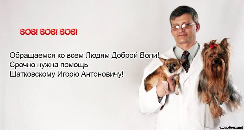Игорь Шатковский